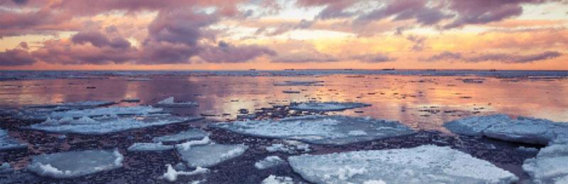 melting ice floes