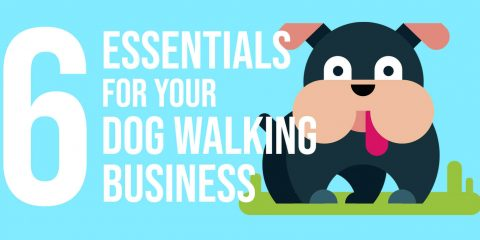 6 Essentials For Your Dog Walking Business