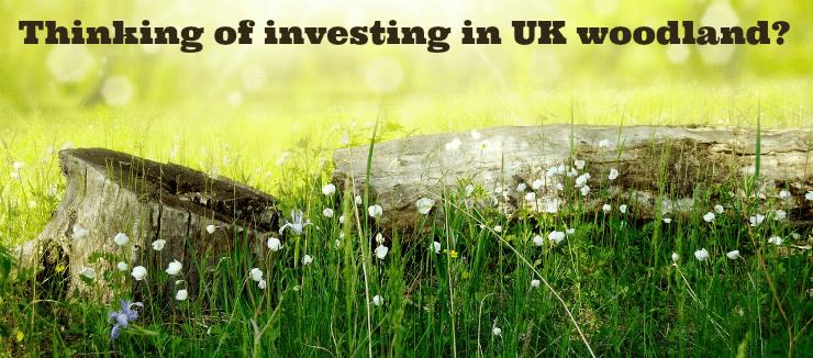 Investing Woodland UK