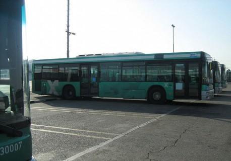 bus egged