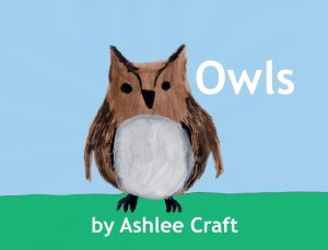 Owls (Wonderful Wildlife, #7) by Ashlee Craft