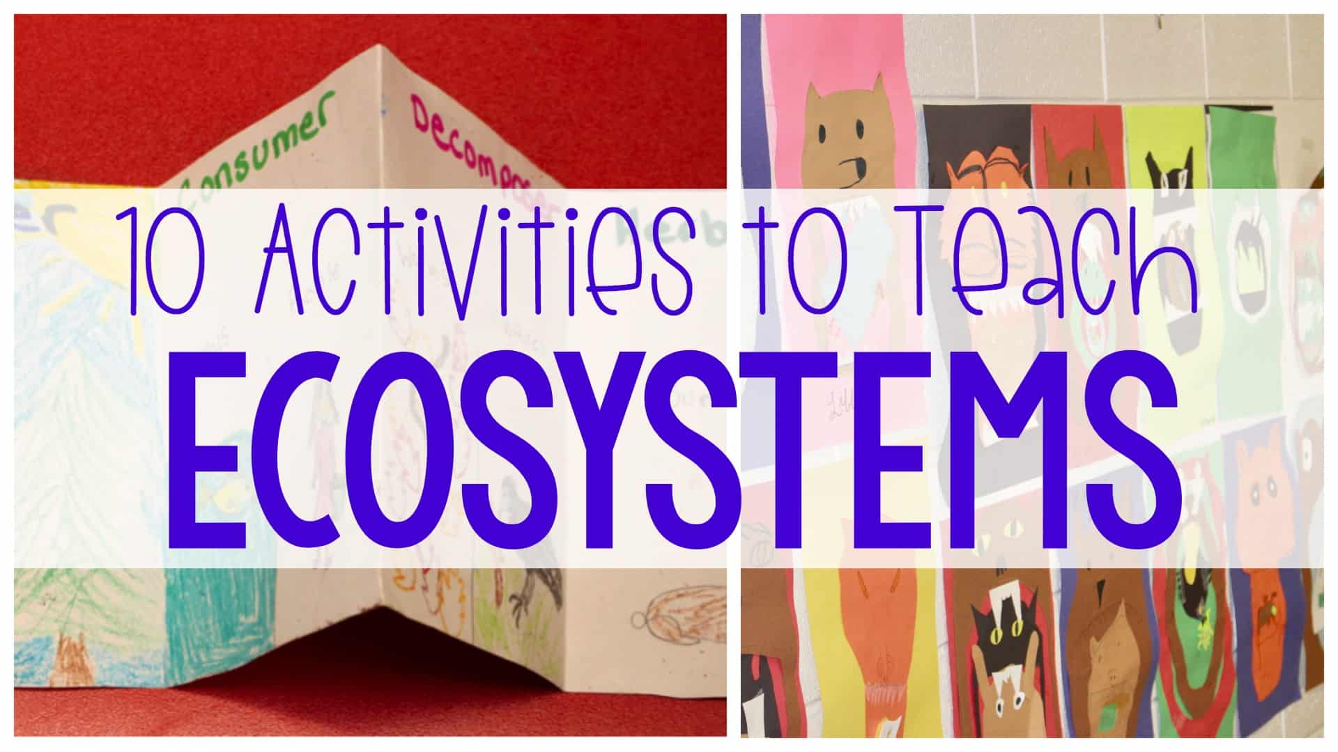 10 Activities To Teach Ecosystems