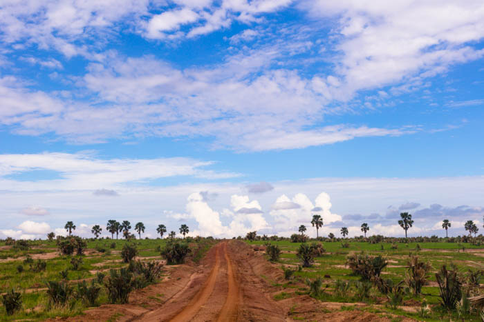 The Perfect Itinerary for Murchison Falls, Uganda
