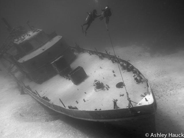 nassau-diving