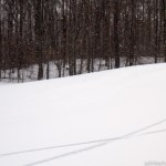 Snowboard tracks on Killington golf course