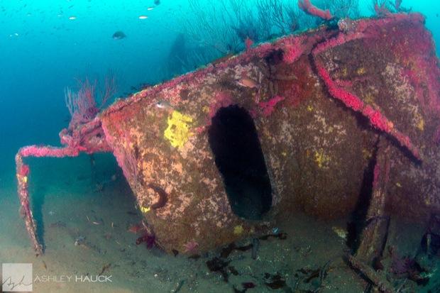 USS_Hogan_Wreck_12