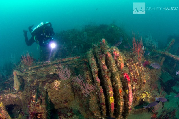 USS_Hogan_Wreck_17