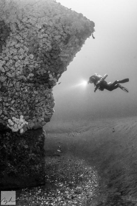 Diver on USS Hogan Wreck, San Diego