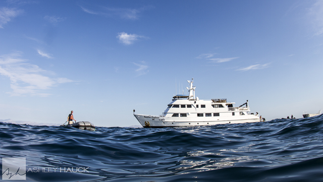 Sea of Cortez diving: Nautilus Explorer ship and skiff