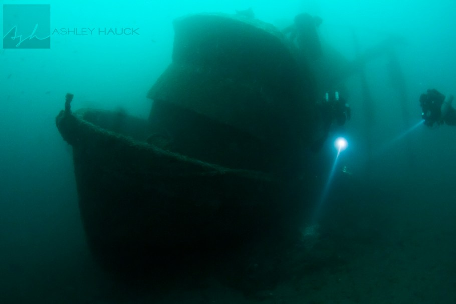 Diving the Infidel wreck off Catalina Island