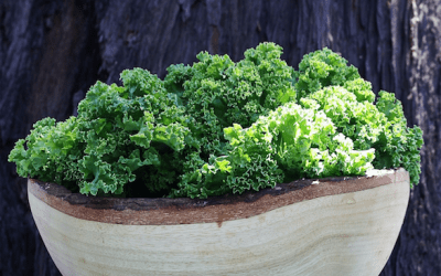 A Kale Salad Recipe That Even Your Kids Will Love