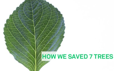 How we saved 7 trees – Ashlins as an environmentally friendly business