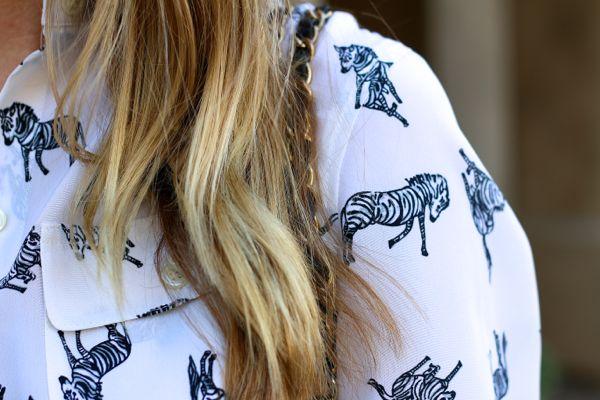 zebra shirt 3