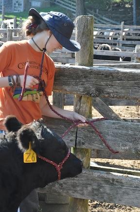 Middle School Farm Hands Program, Fall 2012