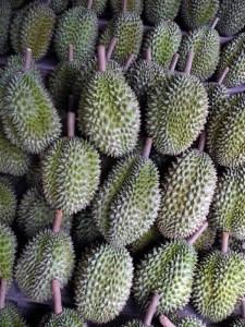 durian frutto asia thailandia