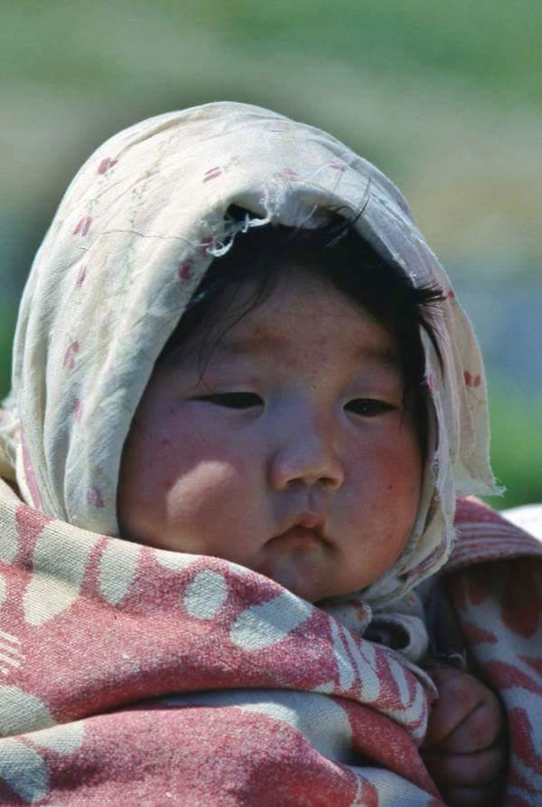 Bambina Mongolia