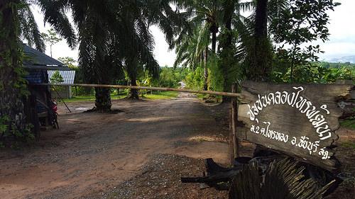 immagine Prachatai