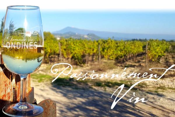 Domaine Les Ondines Wines