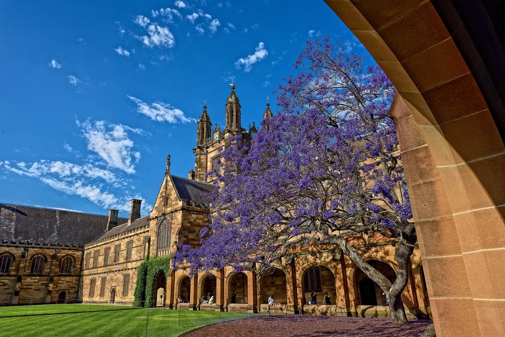 Best Australian Universities for India & South Asia Studies