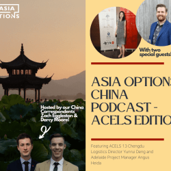 ACELS: The Hybrid Project Team Connecting Emerging Australia-China Leaders