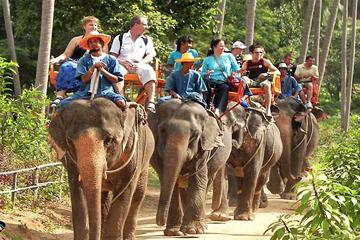 Island Safari Tours & Elephant Trekking,Island Safari Tours & Elephant Trekking travel