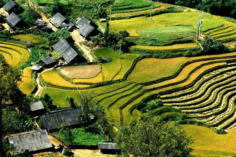 Terraced fields - images representing Sapa
