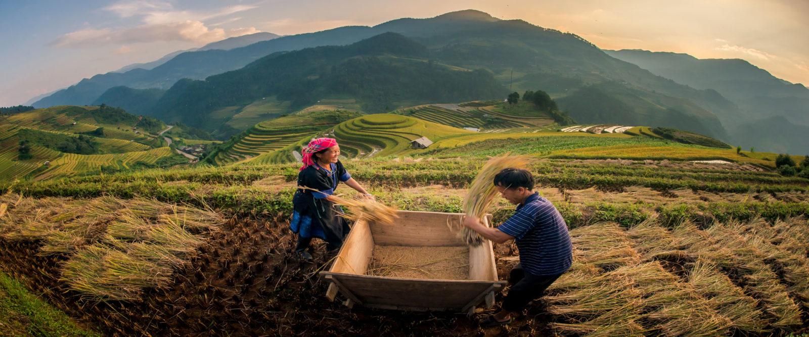 Voyage-Vietnam-8