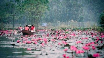 Vietnam Travel Guides 2017: Where To Go To Worship Buddha