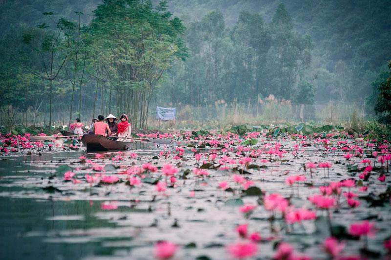Vietnam Travel Guides 2017: Where To Go To Worship Buddha 2