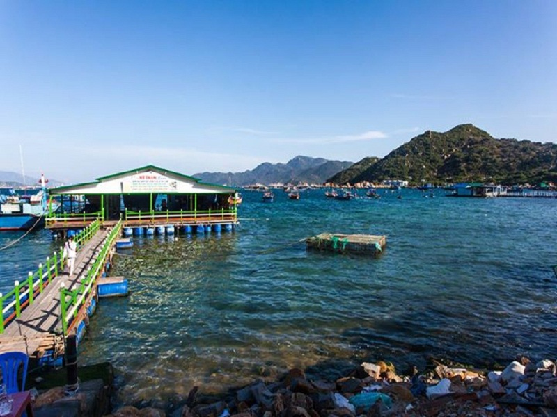 The-simple-and-wild-Binh-Hung-Island3