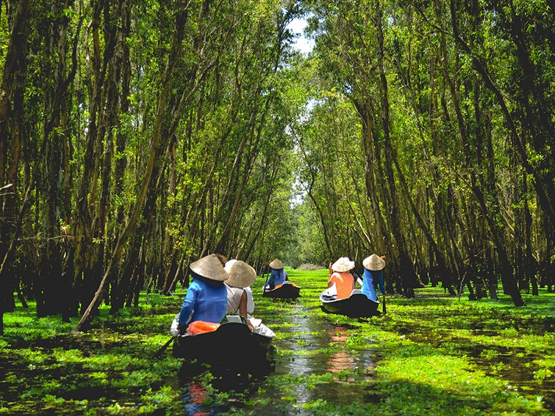 Mekong Dealta tours: The perfect landscapes of Mekong Delta in Vietnam
