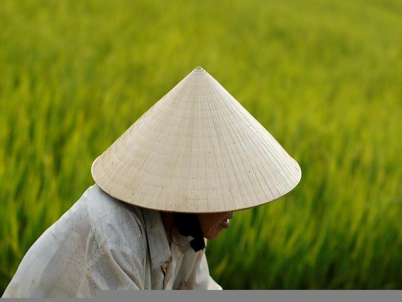 Non-la–a-great-souvenir-for-a-tour-to-Vietnam1