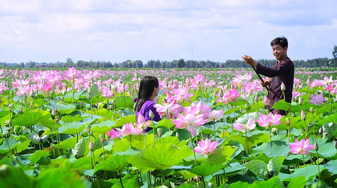 the-wonderful-beauty-of-the-floating-water-season-through-the-three-famous-western-destinations-of-vietna-3