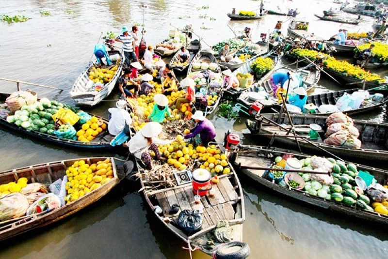 The three best Mekong Delta tour 1 day for your short holiday 6