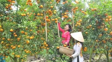 Building Mekong Delta ecotourism tour