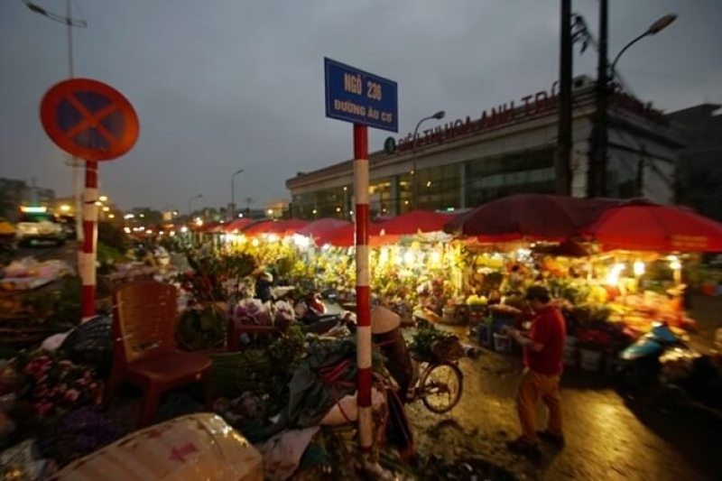 Quang Ba Flower Market is on top of the prominent Tet holiday spots in Hanoi