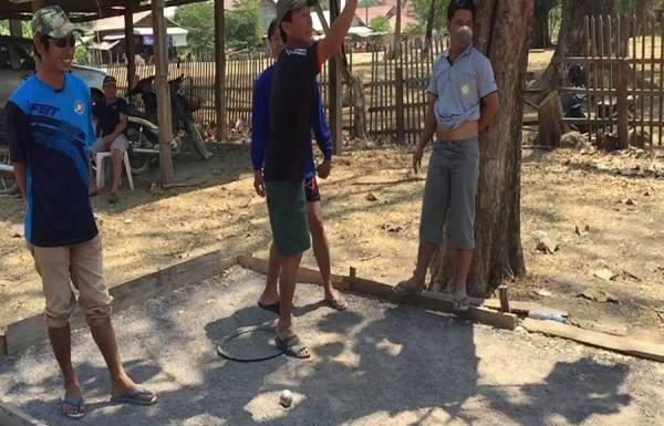 Ban Hin Siew Tai Palm Sugar Trees,Ban Hin Siew Tai Palm Sugar Trees in Laos