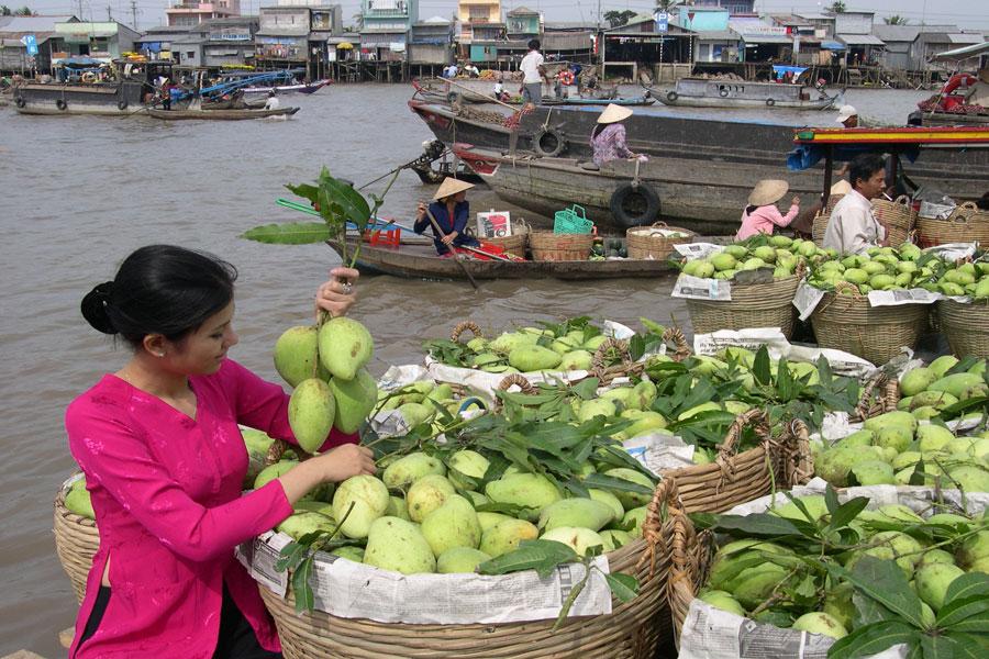 3 days around the Mekong Delta, Mekong delta tours