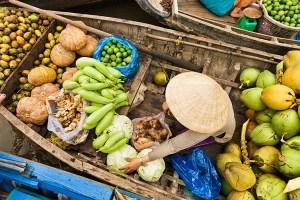 Explorer along Mekong Delta of Vietnam to Cambodia