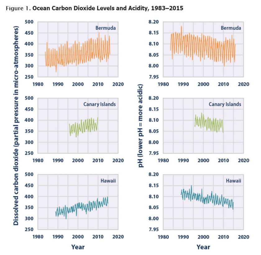 https://www.epa.gov/climate-indicators/climate-change-indicators-ocean-acidity