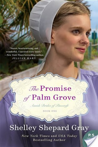 Review: The Promise of Palm Grove by Shelley Shepherd Gray