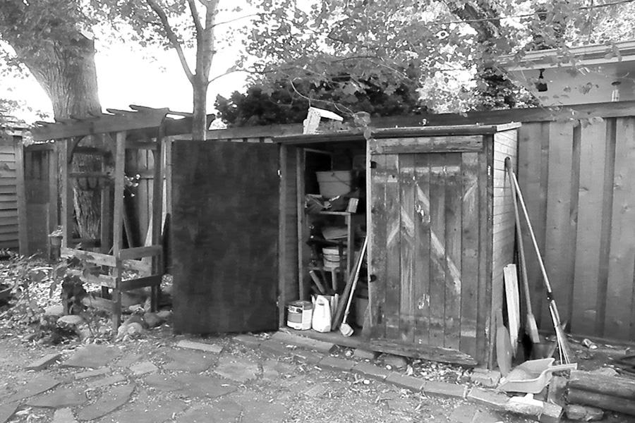 backyard_shed small