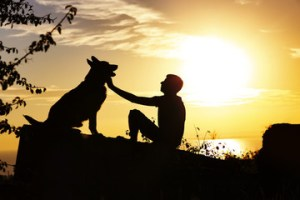 Pets and Human Relationships