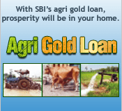 RRB Agri Gold Loan
