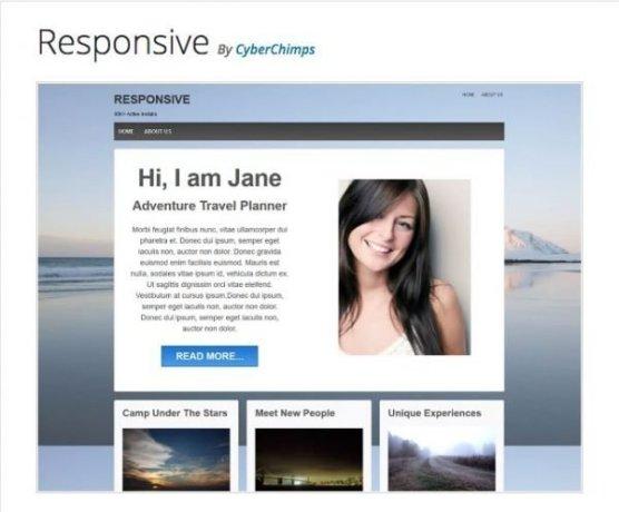 responsive wp theme