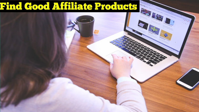 How To Monetize Your Blog With Affiliate Marketing in Hindi (Know 8 Hacks)