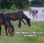 Chill Out Bro I Got This Funny Horse Meme