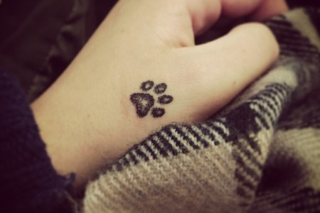 Beautiful Spring Flower Paw Print And Flower Tattoo Spring Flower