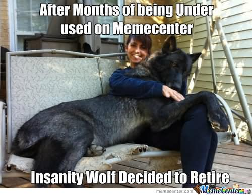 Baby Insanity Wolf Go For The Jugular Funny Wolf Meme Photo