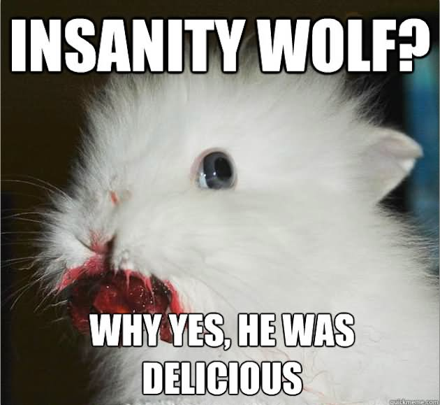 45 Very Funny Wolf Meme Pictures That Will Make You Laugh